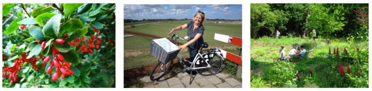 foto midden: Astrid van Beek toont de kaart van de Nieuwe Driemanspolder, foto: Simone Langeveld